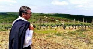 ЕKСKЛУЗИВНО: Kако је Вучић за сина Данила у пола цене купио плантажу од преко 500 хектара код Лесковца! (фото, видео)