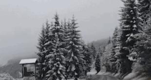 Успорен саобраћај на ауто-путевима, пиротски округ БЕЗ СТРУЈЕ, проглашена и ВАНРЕДНА СИТУАЦИЈА (видео)