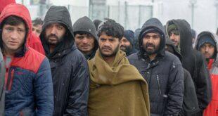 Босански Муслимани организују ноћне страже због миграната?