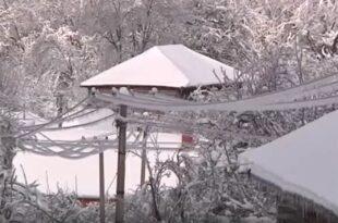 Скоро сва села на подручју Лесковца, Медвеђе и Грделице данима без струје, окована снегом и ледом