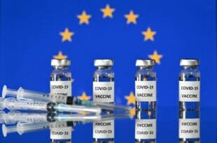 ПОТПУНИ РАСПАД СИСТЕМА У ЕУ: Брисел открио шта се дешава у земљама ЕУ