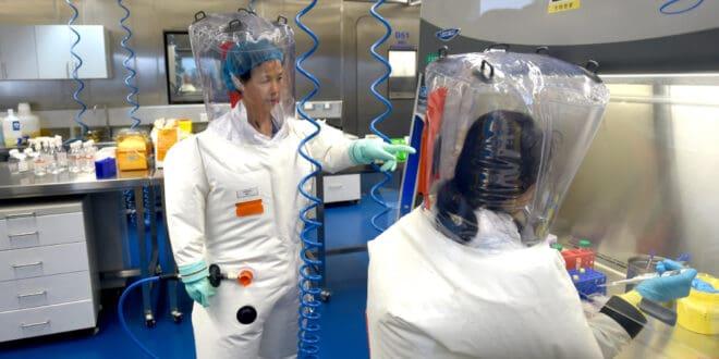 Међународни тим кинеских стручњака и стручњака СЗО: Није пронађена животиња од које је потекао коронавирус