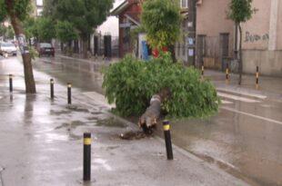 Јако невреме погодило Врање: Потоци на улицама, ветар рушио дрвеће
