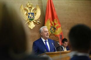 Прогласили сте Србе за геноцидан народ а сад не би да делите Србе и Црногорце?! Марш у три пм!