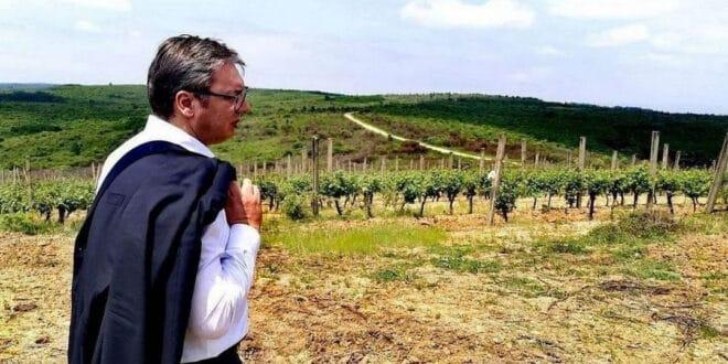 """""""Миленијум тим"""" отео 700 хектара државне земље код Лесковца"""