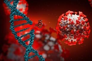 """Немачки научници тврде да су нашли """"слабу тачку"""" коронавируса"""