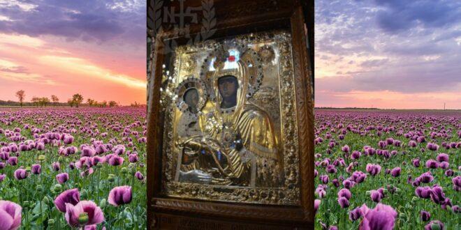 Данас славимо празник Пресвете Богородице Тројеручице