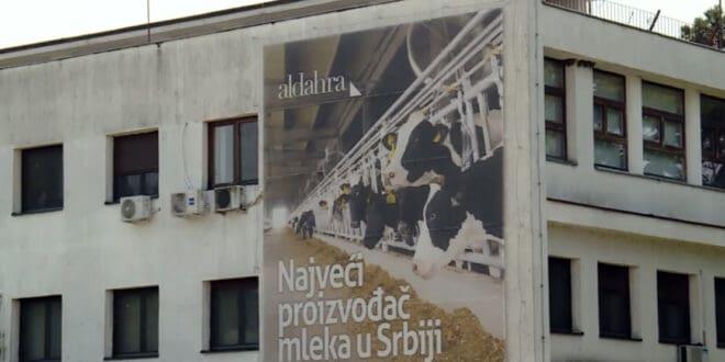 ПКБ три године након приватизације од Ал Дахре: Неухрањене краве, затворене фарме и минималне плате