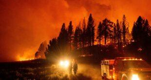 Апокалиптичне сцене: Гори Калифорнија, измерено више од 54 степена (видео)
