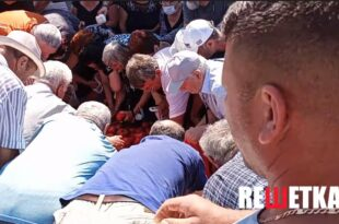 Пољопривредници делили парадајз а народ као да га никад није видео (видео)