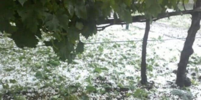 Незапамћено невреме у Блацу донело муке пољопривредницима, у неким селима штета стопостотна (видео)