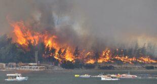 Страшне сцене масовних пожара у Турској – Број мртвих расте, туристи беже чамцима (видео)